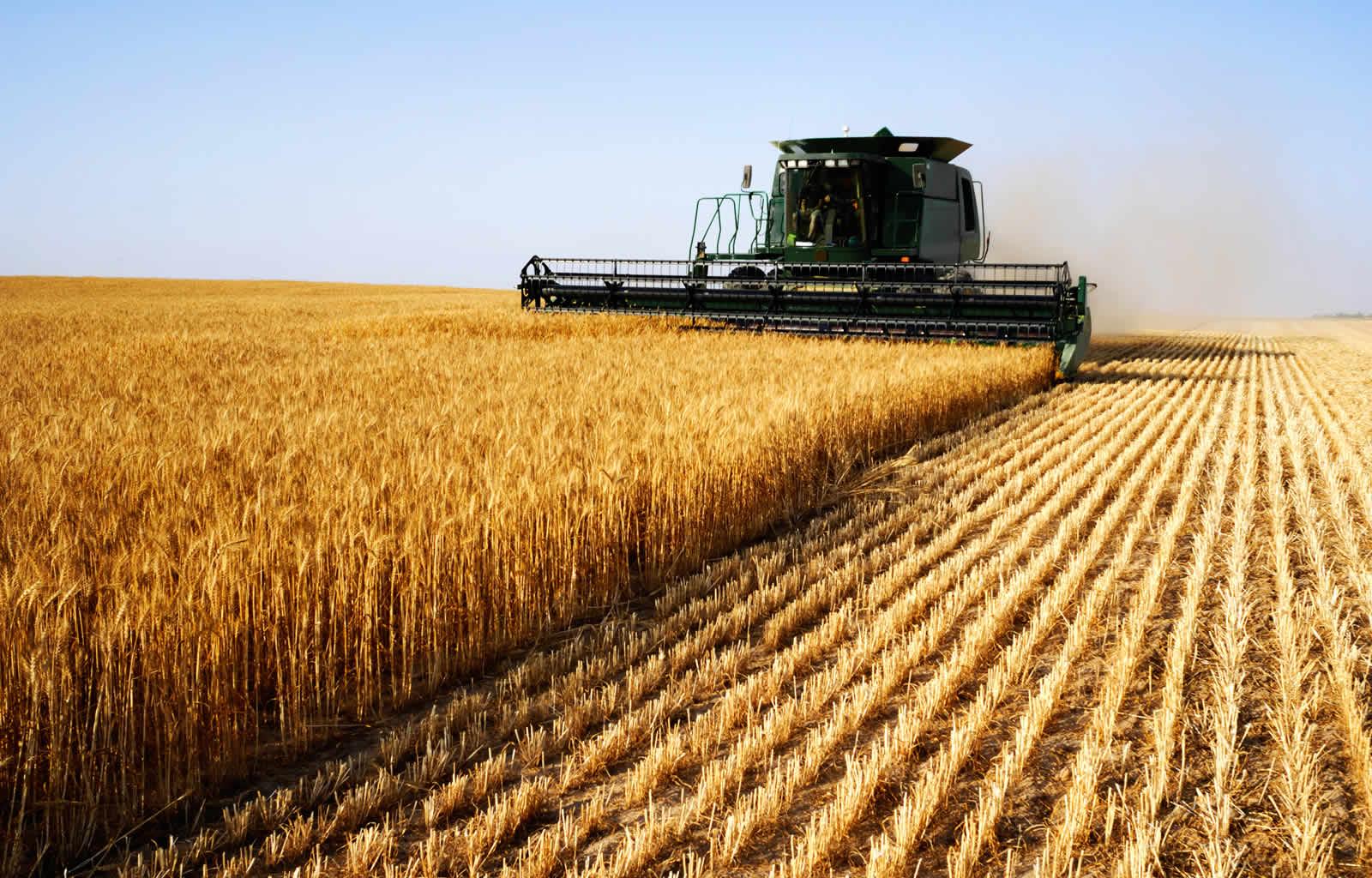 Картинки по запросу кредит на сельское хозяйство
